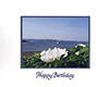 #19 Happy Birthday #1