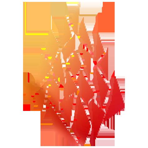 October 2019: CSJ Sisters, Associates, Agrégeés: Living the Mission of Unifying Love