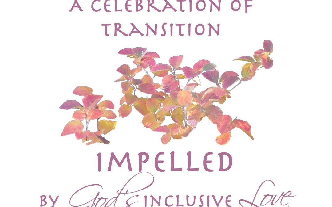 Sisters of St. Joseph Celebrate Transition of Leadership: A Ministry of Collaboration