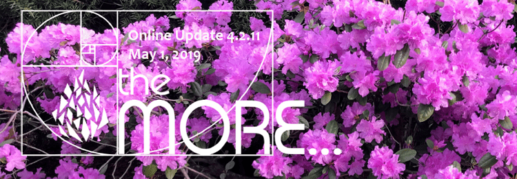 the MORE… Online Updates Volume 4.2.11 May 1, 2019