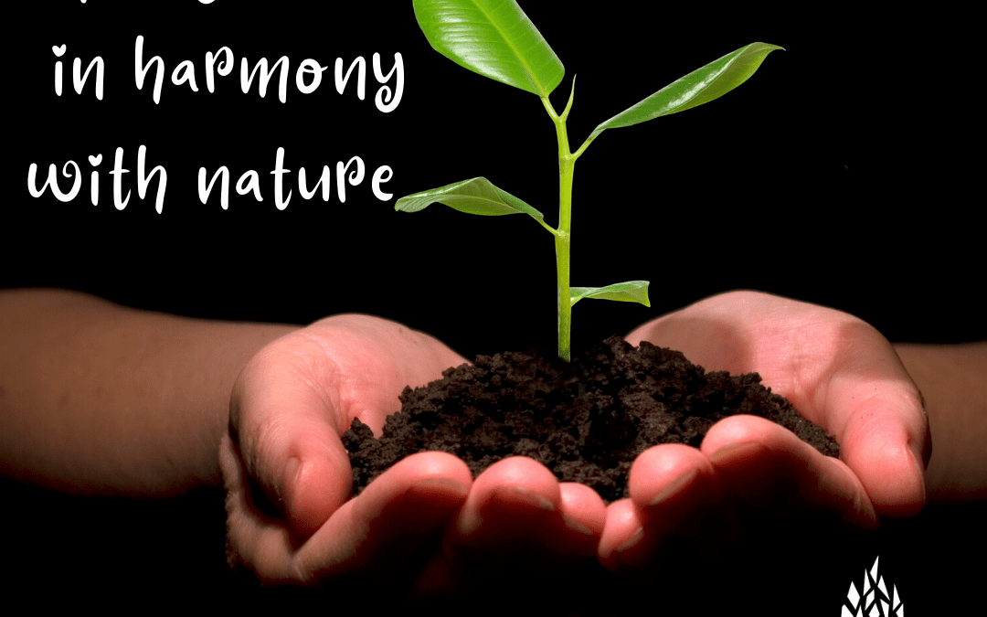 April 25: Lifestyles in Harmony with Nature — Earth Day 50th Anniversary Celebration