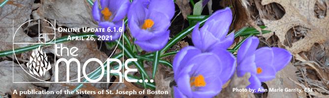 the MORE… Online Updates Volume 6.1.6 April 26, 2021
